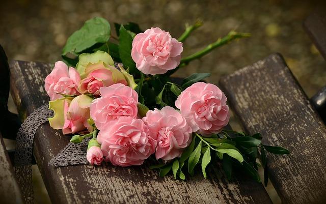 květina na lavičce